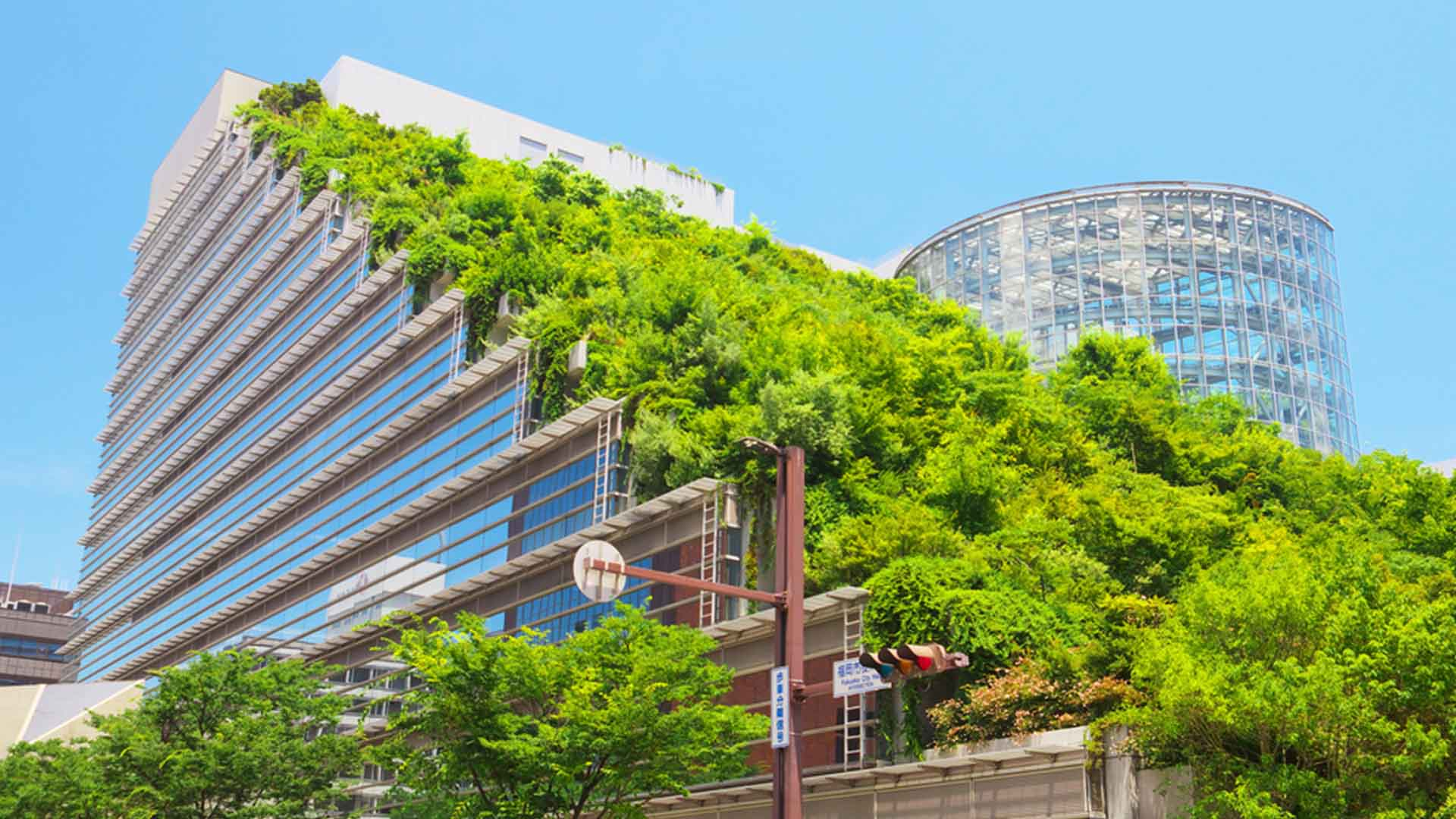 Realty firm IREO ties up with GRIHA for green ratings