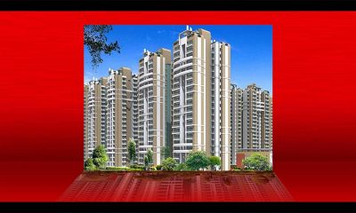 County Group launches Coco County: With an investment of Rs 300 crore